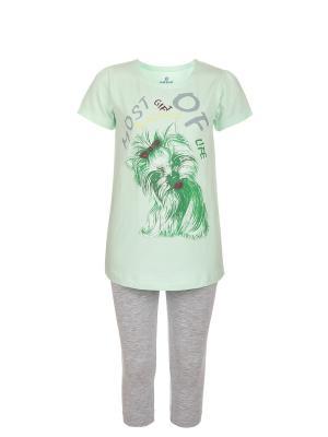 Пижама BAYKAR. Цвет: зеленый