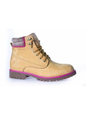 Ботинки Patrol. Цвет: рыжий