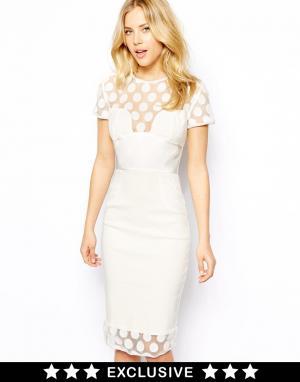 Платье-футляр с сетчатыми вставками в горошек и атласным поясом Tempest. Цвет: кремовый