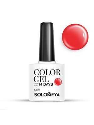 Гель-лак Color Gel Тон Shiraz SCG153/Шираз SOLOMEYA. Цвет: красный