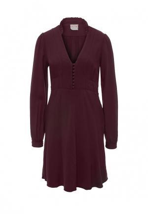 Платье Nolita. Цвет: фиолетовый