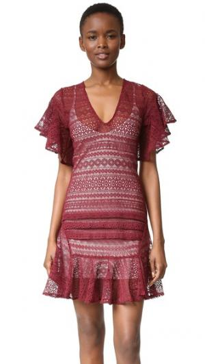 Платье Cybil Marissa Webb. Цвет: темно-красный