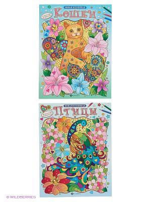 Релакс-раскраски: птицы и кошки Феникс-Премьер. Цвет: голубой, розовый