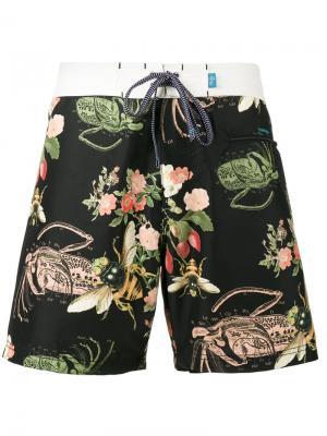 Пляжные шорты Burgh Riz Boardshorts. Цвет: чёрный