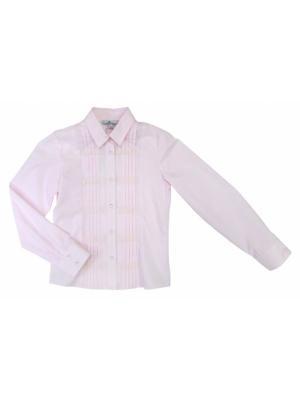 Блузки BORELLI. Цвет: розовый