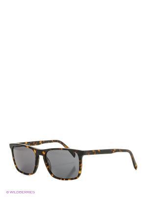 Солнцезащитные очки Rodenstock. Цвет: темно-коричневый