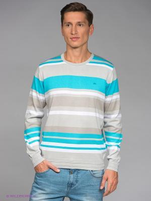 Джемпер RETIEF. Цвет: серый, голубой