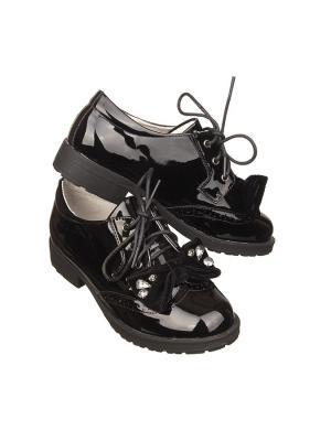 Ботинки Stilnyashka. Цвет: черный