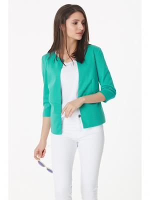 Жакет Fly. Цвет: светло-зеленый