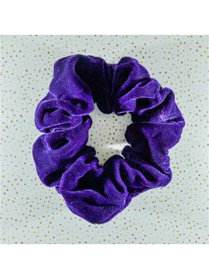 Резинка для волос Bizon. Цвет: сливовый