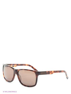 Солнцезащитные очки IC 666S 03 Iceberg. Цвет: коричневый
