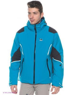 Куртка Salewa. Цвет: голубой, черный