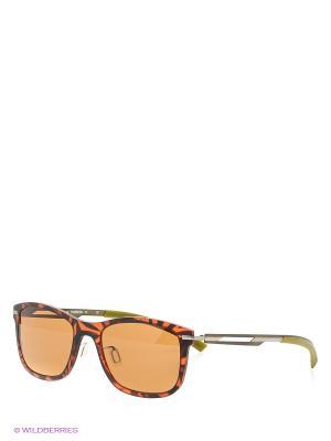 Солнцезащитные очки Bikkembergs. Цвет: коричневый
