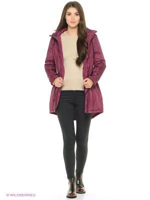Куртка Modis. Цвет: сливовый, темно-фиолетовый