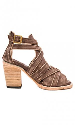 Обувь на каблуке claw Freebird by Steven. Цвет: коричневый