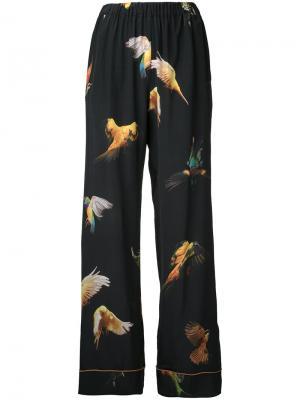 Пижамные брюки Budgie Romance Was Born. Цвет: чёрный