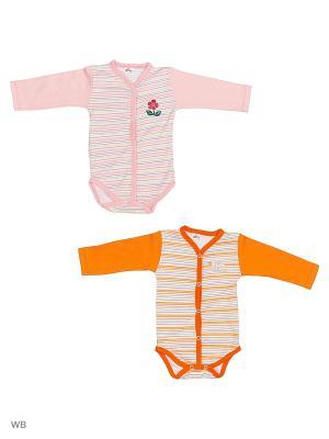 Боди 2шт. Babycollection. Цвет: розовый, оранжевый