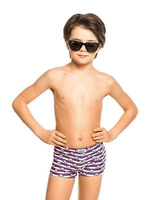 Плавки-шорты для мальчиков Nirey. Цвет: синий, белый
