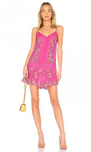 Платье-комбинация juliet dunn. Цвет: розовый