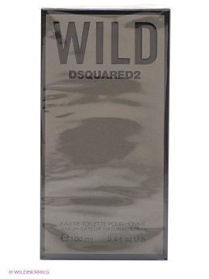 Туалетная вода Wild, 100 мл Dsquared. Цвет: серый