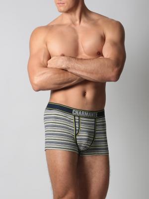 Трусы-боксеры мужские Charmante. Цвет: серый, желтый