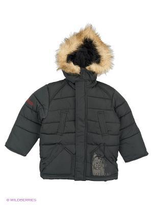 Куртка для мальчика Медвежья лапа Пралеска. Цвет: хаки