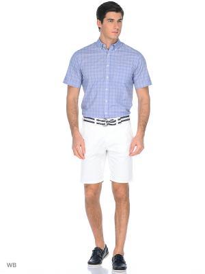 Рубашка Boston Brothers. Цвет: синий, белый