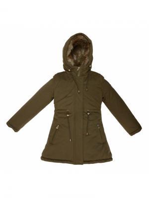 Куртка BORELLI. Цвет: хаки