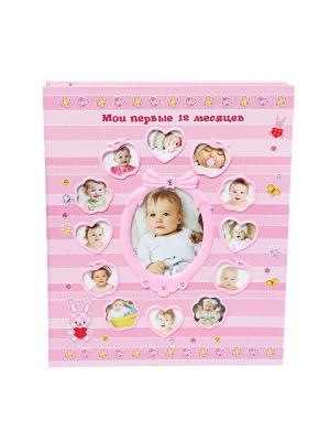 Фотоальбом-анкета First 12 Month VELD-CO. Цвет: розовый
