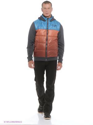 Куртка Stayer. Цвет: бронзовый, антрацитовый