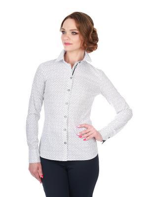 Блузка BLAUZ. Цвет: черный, белый