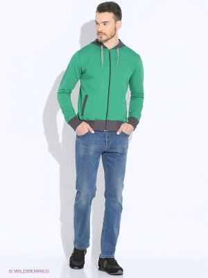 Толстовка D.S. Цвет: зеленый