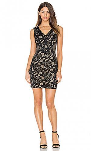 Мини платье с разными кружевами sueann Greylin. Цвет: черный