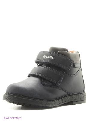 Ботинки GEOX. Цвет: темно-синий, темно-серый