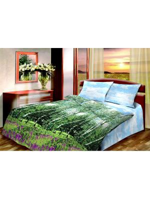 Комплект постельного белья из бязи Семейный Василиса. Цвет: зеленый, голубой