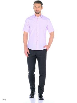 Рубашка мужская CARAT.. Цвет: розовый