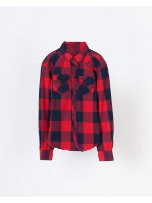 Рубашка INCITY. Цвет: красный