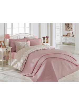Постельное белье Cotton Box. Цвет: бледно-розовый, розовый, серый, фиолетовый