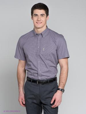 Рубашка Maestro. Цвет: сиреневый, черный