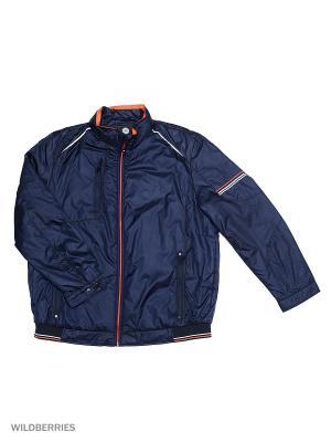 Куртка Malinardi. Цвет: голубой