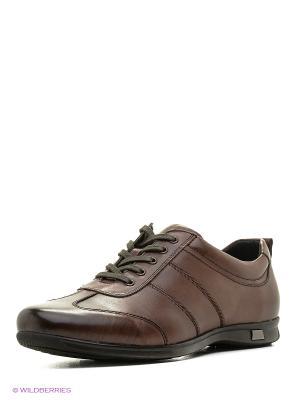 Ботинки CARLO BELLINI. Цвет: коричневый