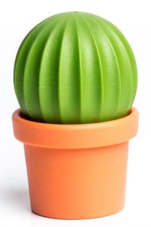 Набор для специй Cactus Qualy. Цвет: мультицвет