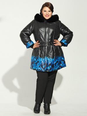 Куртка Silver-String. Цвет: черный, синий