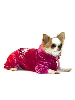 Спортивный костюм Ай Да Пес. Цвет: розовый