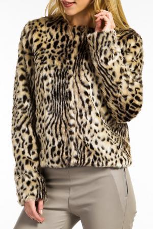 Куртка Ibana. Цвет: leopard