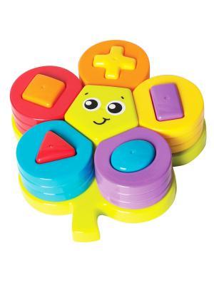 Сортер Цветок Playgro. Цвет: фиолетовый, красный, оранжевый