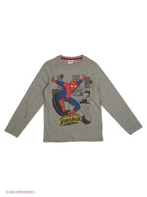 Лонгсливы Spiderman. Цвет: серый меланж