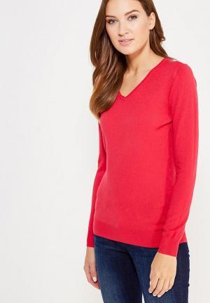 Пуловер Blue Oltre. Цвет: розовый