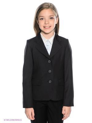 Пиджак BORELLI. Цвет: темно-серый