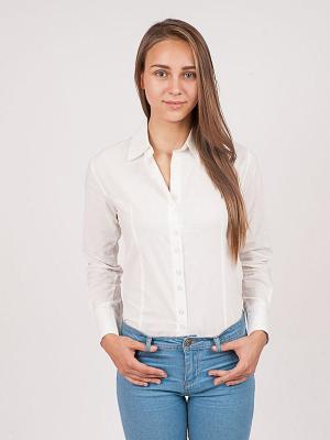 Рубашка Magnetiq. Цвет: белый